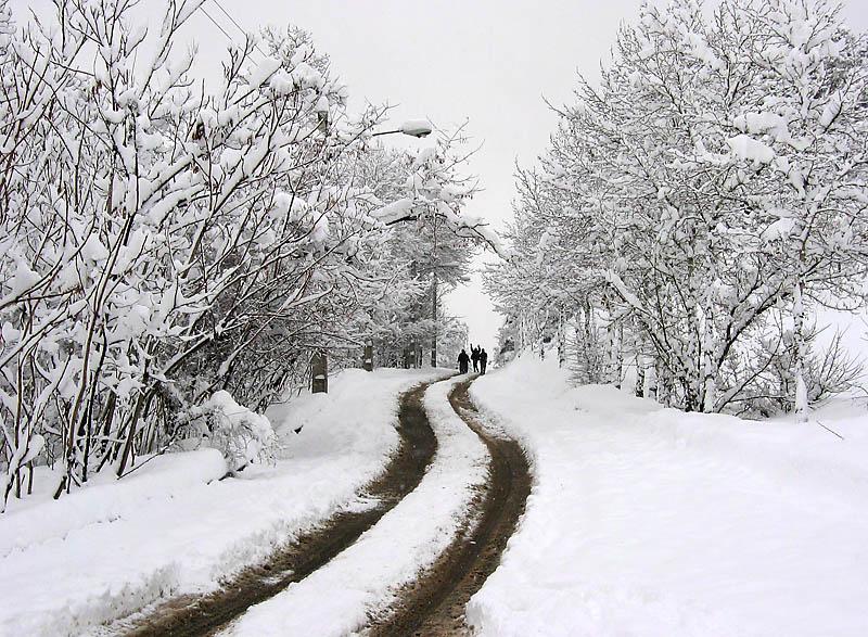 بارش برف و باران مسافران نوروزی گیلان را غافلگیر کرد/ ارتفاع برف در ماسوله به ۲۰ سانتی متر رسید