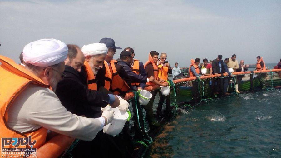 گزارش تصویری حضور حجت الاسلام دکترمجید انصاری معاون ریاست محترم جمهور در کیاشهر