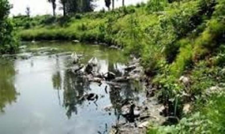 سیاهترین رودخانههای جهان در رشت