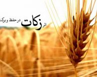 میزان زکات فطریه سال ۱۳۹۵ اعلام شد