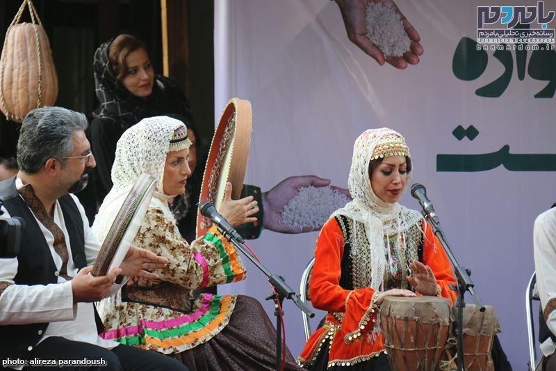 نخستین جشنواره برنج در سیاهکل 105 - نخستین جشنواره شکرانه برداشت برنج در سیاهکل برگزار شد