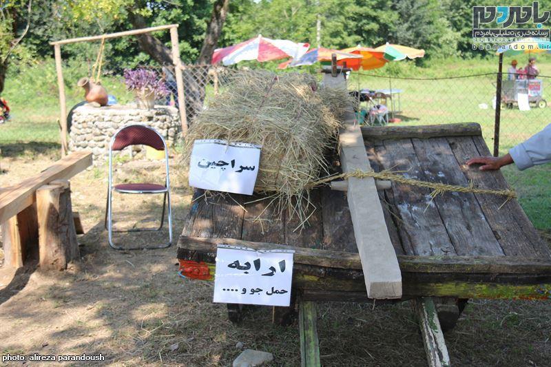 نخستین جشنواره برنج در سیاهکل 26 - نخستین جشنواره شکرانه برداشت برنج در سیاهکل برگزار شد