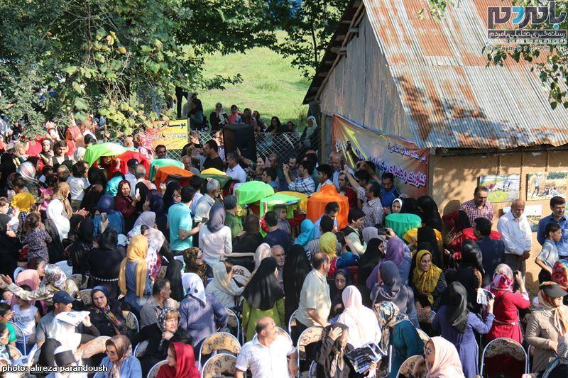 نخستین جشنواره برنج در سیاهکل 56 - نخستین جشنواره شکرانه برداشت برنج در سیاهکل برگزار شد
