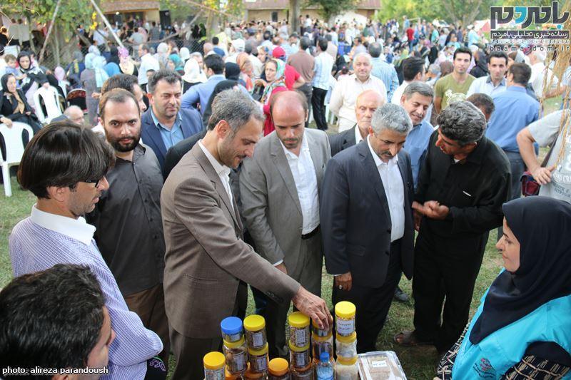 نخستین جشنواره برنج در سیاهکل 92 - نخستین جشنواره شکرانه برداشت برنج در سیاهکل برگزار شد