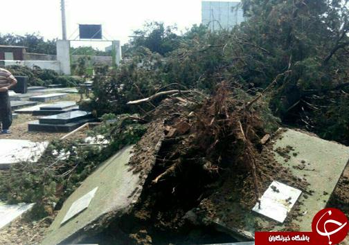 نبش قبر به علت وقوع طوفان!