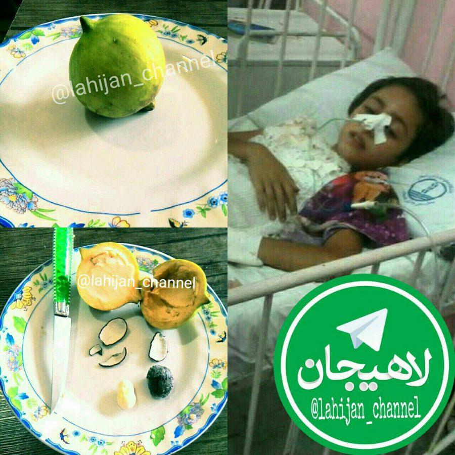 مسمومیت ۱۳ نفر در رودسر با خوردن میوهای ناشناخته + تصاویر