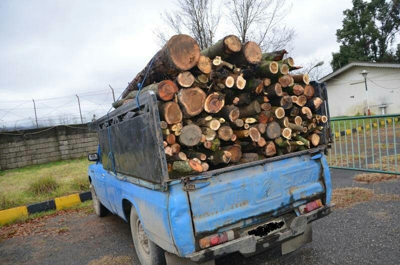 كشف ۲ و نيم تن چوب قاچاق درصومعه سرا