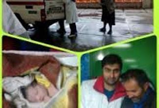 تولد ۵۵ نوزاد برفی در گیلان
