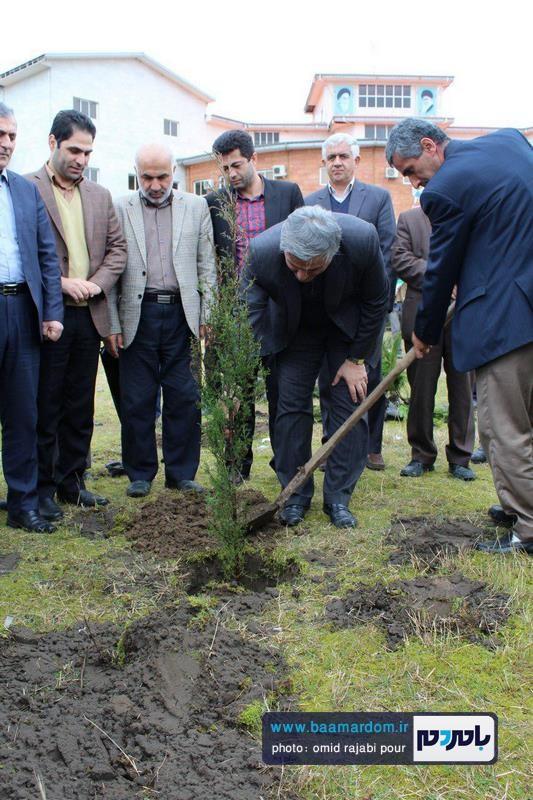 کاشت نهال درخت در دانشگاه آزاد اسلامی واحد رودسر و املش + گزارش تصویری