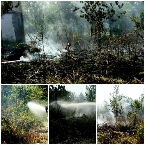 آتش سوزی علفزارها در رشت - تلاش ۷۰۷ دقیقه ای آتش نشانان برای اطفای آتش سوزی علفزارها در رشت