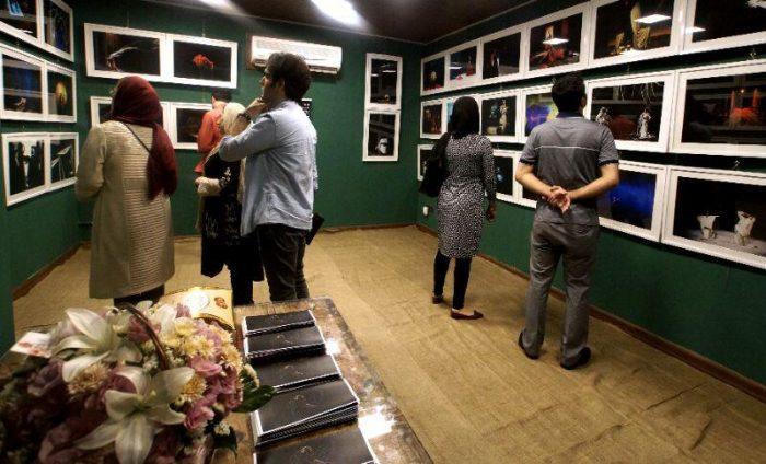 آیین گشایش نمایشگاه گروهی عکس پله سوم 15 - گزارش تصویری آیین گشایش نمایشگاه عکس تئاتر «پله سوم» در لاهیجان