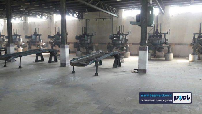 افتتاح مجدد کارخانه چایسازی سپید رود 4 - راهاندازی مجدد یکی از بزرگترین کارخانههای چایسازی خاورمیانه در گیلان