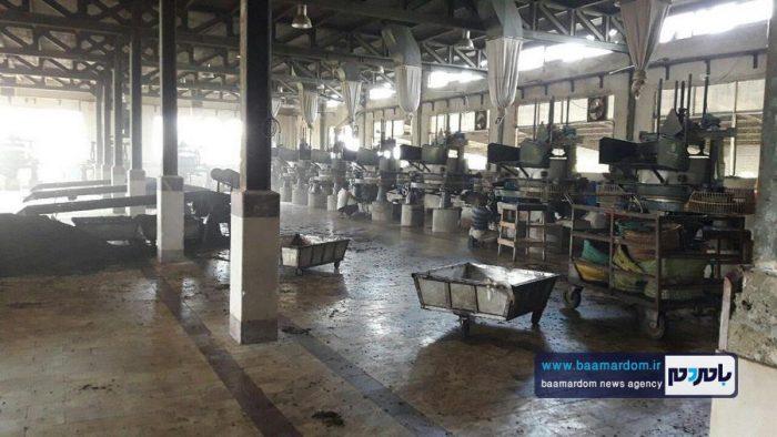 افتتاح مجدد کارخانه چایسازی سپید رود 5 - راهاندازی مجدد یکی از بزرگترین کارخانههای چایسازی خاورمیانه در گیلان