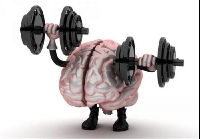 افزایش چند برابری «قدرت حافظه» با این تدابیر طب سنتی