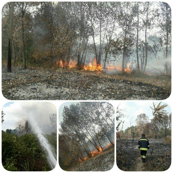 آتشسوزی چند هکتاری علفزارها در خیابان باهنر و بلوار لاکان رشت + عکس