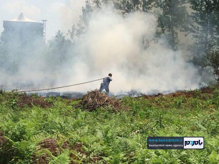 ١٥٥ مورد آتشسوزی علفزار و پوشش جنگلی در لاهيجان   تصاویر