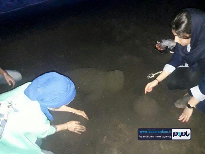 جشنواره روز ملی دریای کاسپین در ساحل لاهیجان 17 - جشنواره بین المللی پاسداشت دریای کاسپین در ساحل لاهیجان برگزار شد + تصاویر