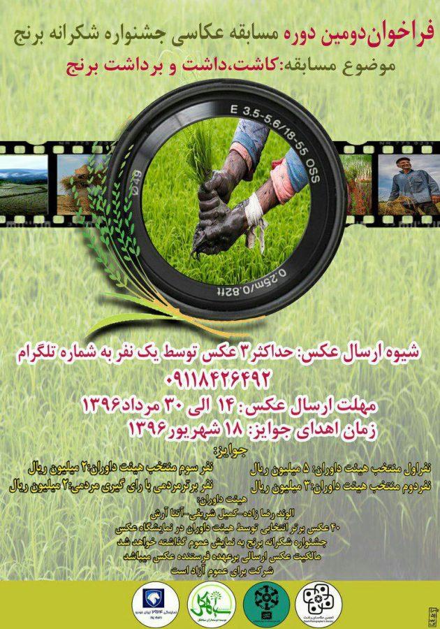 فراخوان دومین دوره مسابقه عکاسی جشنواره شکرانه برداشت برنج منتشر شد   جزئیات