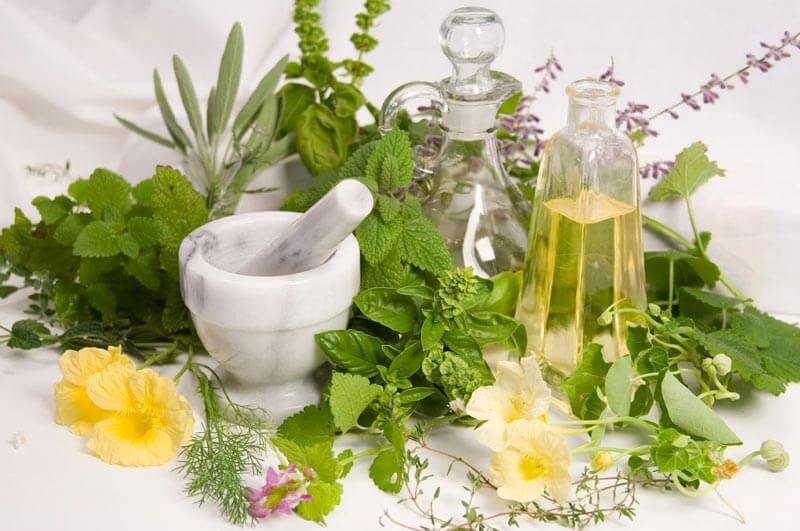 هفت گیاه دارویی که معجزه میکنند+تصاویر