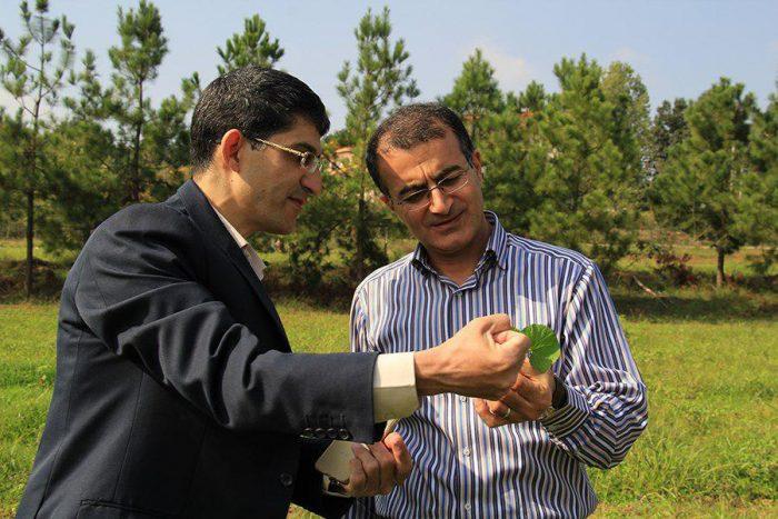 آغاز نخستین مرحله برداشت گیاهان دارویی کمیاب در دانشگاه آزاد رشت + تصاویر