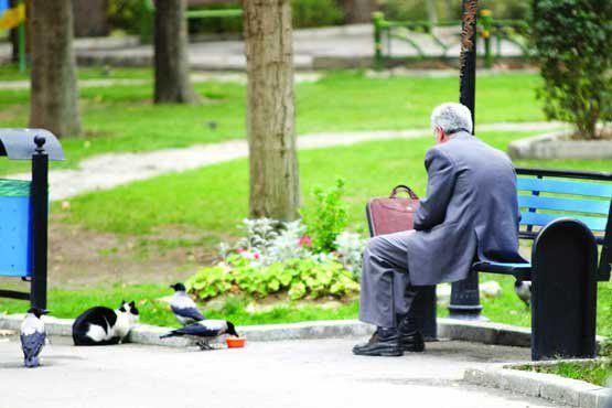 بازنشسته پیرمرد - افزایش ۱۹.۵درصدی حقوق بازنشستگان تامین اجتماعی