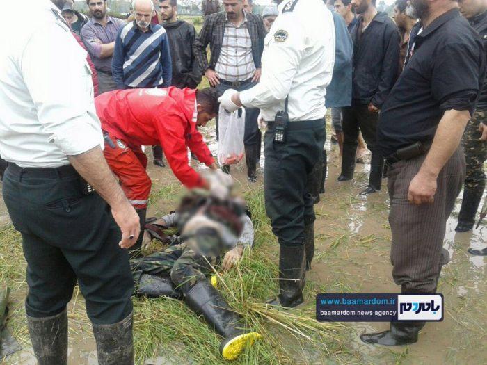 جسد شکارچی 35ساله در مزارع اطراف لاهیجان 7 - جسد شکارچی 35ساله در مزارع اطراف لاهیجان پیدا شد + گزارش تصویری