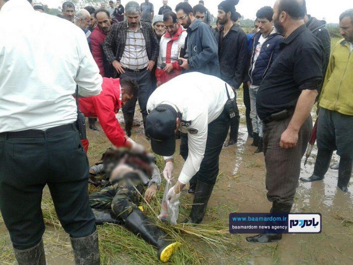جسد شکارچی 35ساله در مزارع اطراف لاهیجان 9 - جسد شکارچی 35ساله در مزارع اطراف لاهیجان پیدا شد + گزارش تصویری