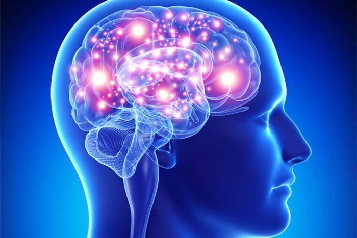 جوانسازی مغز با این رژیم خوراکی فوق مغذی/ چگونه حافظه خود را تقویت کنیم؟