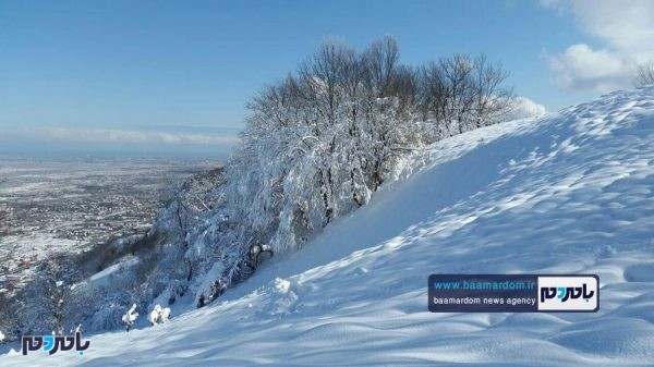 منطقه هفتپیچ لاهیجان پس از بارش اولین برف 17 600x337 - بارش برف و باران در گیلان
