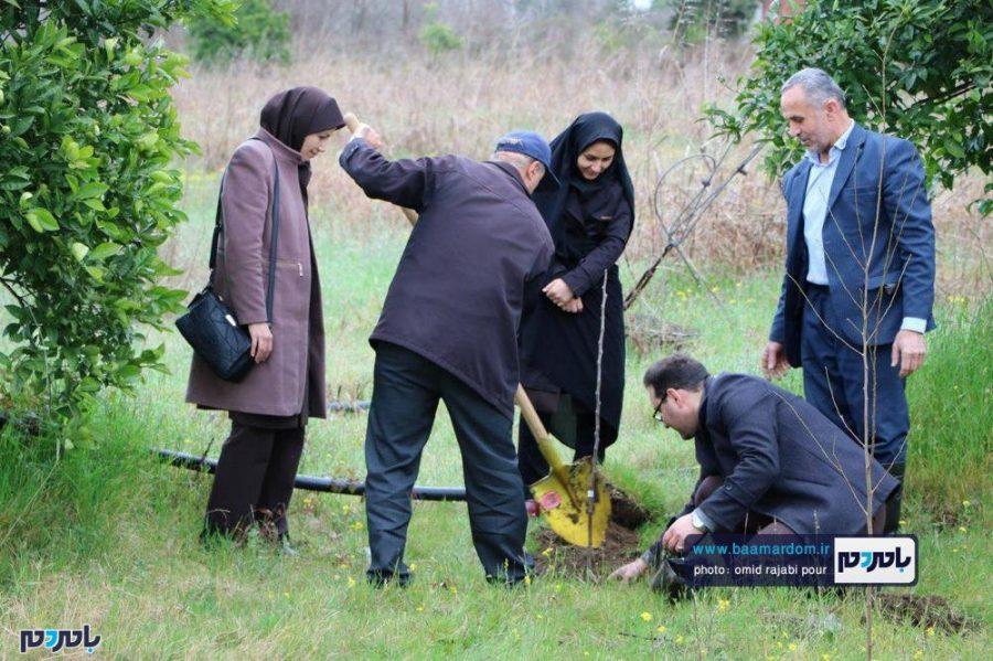 کاشت نهال به یاد شهدای سانچی و مدافع حرم توسط جهاد کشاورزی رودسر + تصاویر