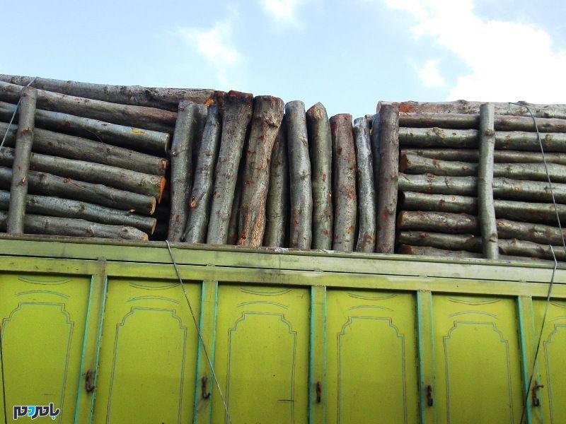 کشف ۳ تن چوب قاچاق در صومعهسرا
