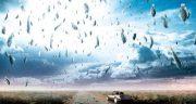 ماجرای بارش ماهی از آسمان اصفهان چه بود