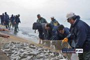 گزارش تصویری از صید ماهی در بندر کیاشهر
