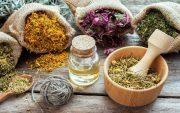 با ۱۰ آنتی بیوتیکِ گیاهی ریشه عفونت ها را در بدنتان را بخشکانید