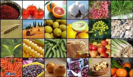 محصولات کشاورزی - کسب درآمدمیلیاردی کشاورزان گیلانی با فروش محصولات