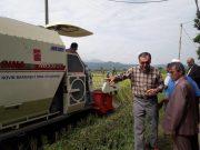دروى برنج توسط فرماندار املش ! + عکس