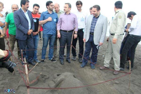 سومین جشنواره روز جهانی دریای کاسپین در لاهیجان 38 600x400 - سومین جشنواره روز جهانی دریای کاسپین در لاهیجان برگزار شد / گزارش تصویری