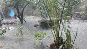 رودسر رکورددار بیشترین بارش باران در گیلان است/بارندگی یک روز در رودسر بیش از میانگین سالانه چند استان