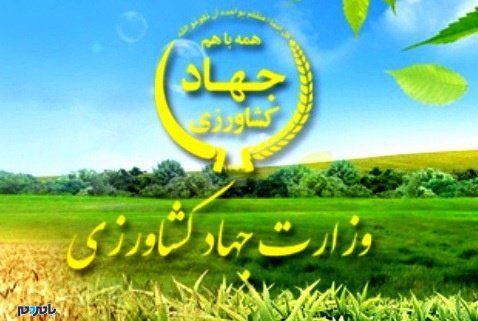 آخرین شنیده ها از انتصاب سرپرست سازمان جهاد کشاورزی گیلان