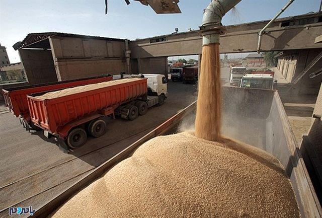 ١٠٠ هزار تن غلات در سیلوها و انبارهای بندرانزلی منتظر دریافت مجوز خروج هستند