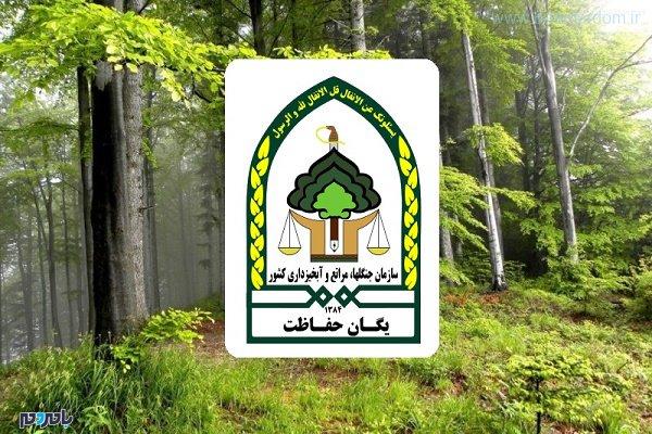 حفاظت واحد منابع طبیعی - بازهم حمله به مامورین حفاظت واحد منابع طبیعی در گیلان