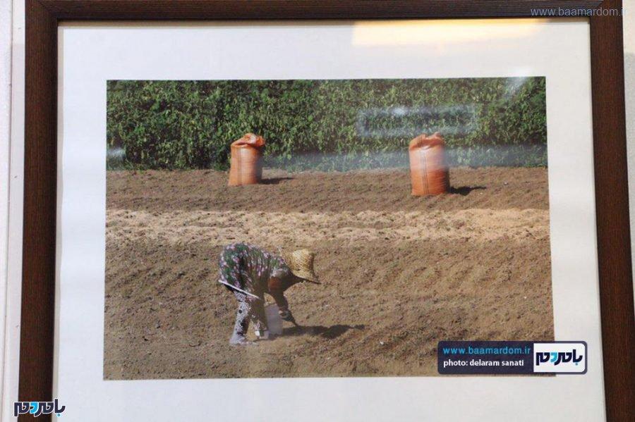 افتتاح نمایشگاه عکس نگاه من در قاب در لاهیجان 5 - گزارش تصویری مراسم افتتاح نمایشگاه عکس (نگاه من در قاب) در لاهیجان