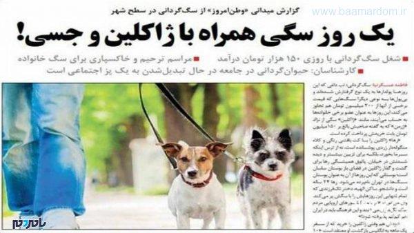 vp0r0 600x338 - شغل سگی در تهران با دستمزد نجومی ! + عکس
