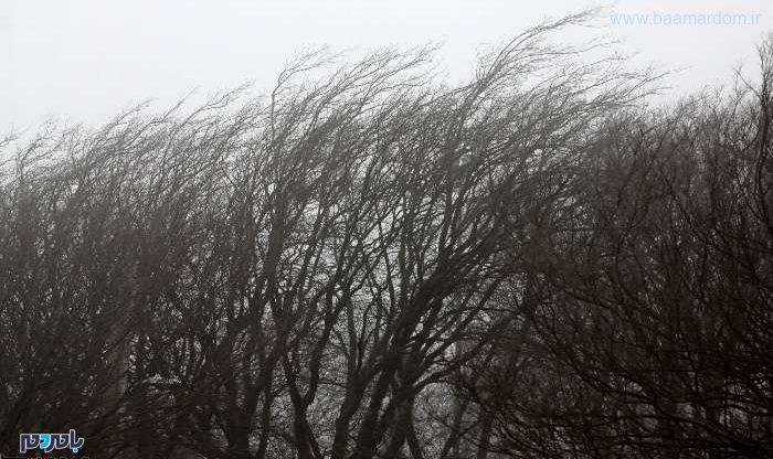 خسارت بالغ بر ۶۶ میلیارد تومانی باد گرم به گیلان