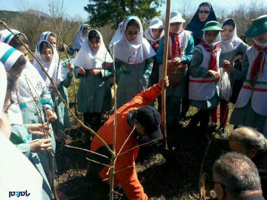 متفاوت دانش آموزان مدرسه سبز لاهیجان 1 533x400 - درختکاری متفاوت دانش آموزان مدرسه سبز لاهیجان با شعار «به دست خود درختی مینشانم»