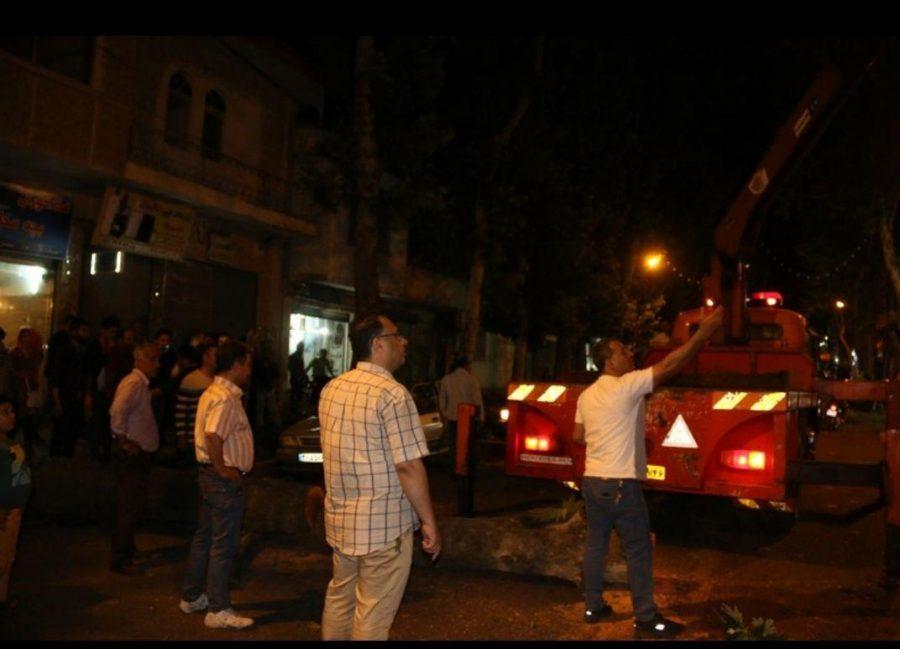 شدید در لاهیجان و سقوط درختان فرسوده 3 - طوفان شدید در لاهیجان و سقوط درختان فرسوده + تصاویر
