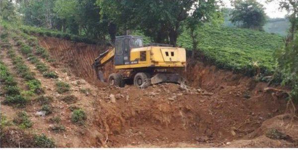 خواری 600x303 - نقش حمایتی برخی از مدیران محلی در پرونده های زمین خواری لاهیجان