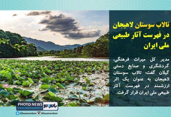تالاب سوستان لاهیجان در فهرست آثار طبیعی ملی ایران 583x400 - تالاب «سوستان» در فهرست آثار طبیعی ملی ایران قرار گرفت
