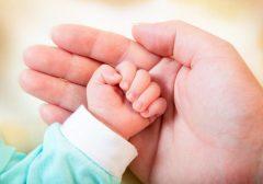 تولد بیش از ۸ هزار نوزاد در گیلان/ آمار وفات از تولد پیشی گرفت