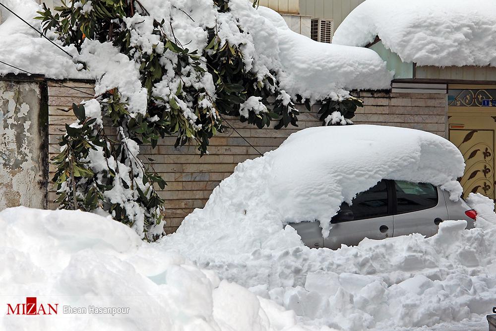 برف لاهیجان 11 - یک روز پس از بارش برف سنگین در لاهیجان / گزارش تصویری